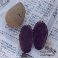 blog_100228_02.jpg