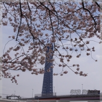 blog_100403_01.jpg