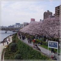 blog_100403_02.jpg