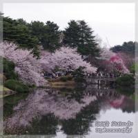 blog_100403_10.jpg