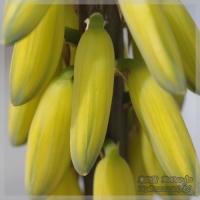 blog_100522_06.jpg