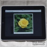 blog_100627_05.jpg