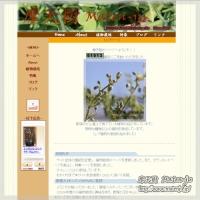 blog_100926_01.jpg
