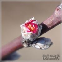 blog_110306_02.jpg