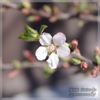 blog_110408_01.jpg