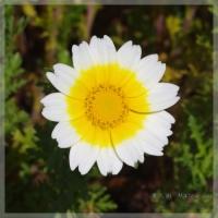 blog_110424_02.jpg