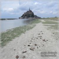 blog_110508_07.jpg