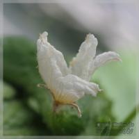 blog_110625_01.jpg