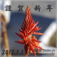 blog_120101_01a.jpg