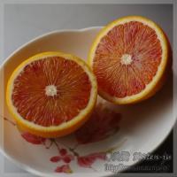 blog_120122_02.jpg