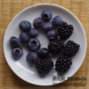 ブルーベリーとブラックベリー Blue berries and Black berries