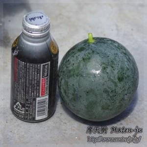 Wartermelon